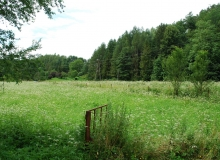 dzialka-pod-lasem-spokojna-okolica-tanio-Sanok1