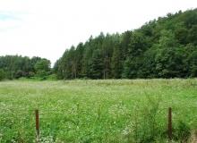 dzialka-pod-lasem-spokojna-okolica-tanio-Sanok3