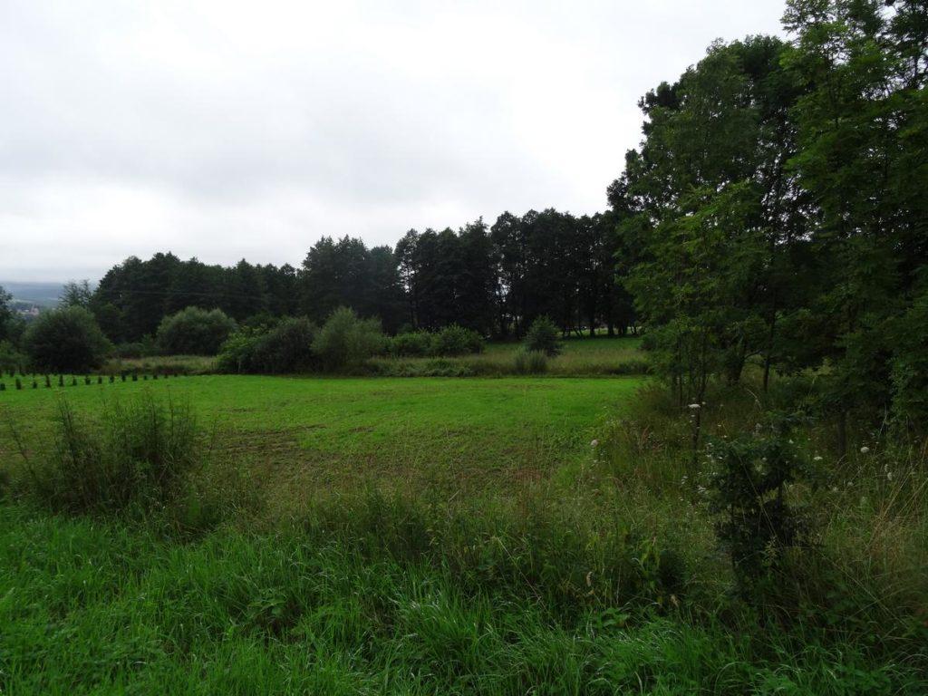 Działka budowlana Sanok – Olchowce