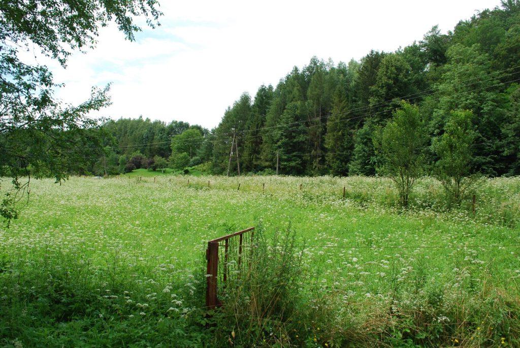 Działki w spokojnej okolicy – Sanok